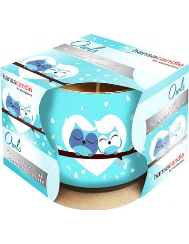 Hansa Candle lõhnaklaasküünal Owl 20h